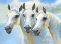 Mares and Clouds