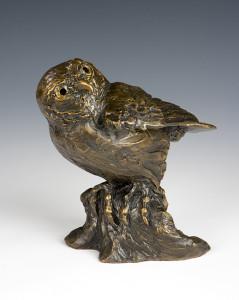 Barbara Duzan, Pygmy Owl