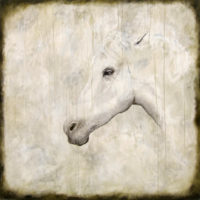 "Equus V Tierney M. Miller 60"" x 60"" oil on canvas $6800"