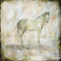 "The Yearling Tierney M. Miller 40"" x 40"" mixed media on canvas $3000"