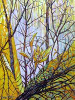 "Forest Bouquet Acacia Alder 48"" x 36"" acrylic on canvas $4950"