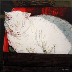 "Cat in the Box by Patricia Hunter, 8"" x 8"", watercolor on paper"