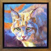 """Cool Kitty Sarah Webber 14"""" x 14"""" oil on canvas $850"""