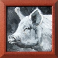 """Pig in Black and White Sarah Webber 15.25"""" x 15.25"""" oil on canvas $275"""