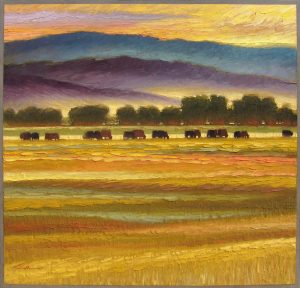 Taos Mountains & Pasture at Sunset by