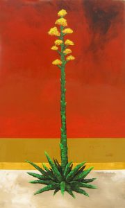 Flowering Agave by