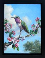 """Lucifer Hummingbird with Blossoms Sarah Kathryn Bean 14"""" x 11"""" oil on panel $650"""