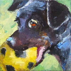 Black Dog with Ball by